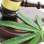 How to Remove a Marijuana Conviction