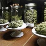 Will Feds Crackdown on Recreational Marijuana?